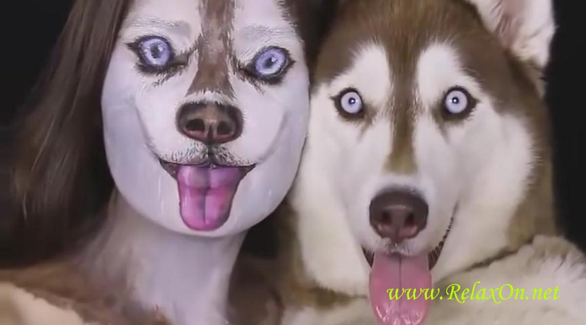 1-собака