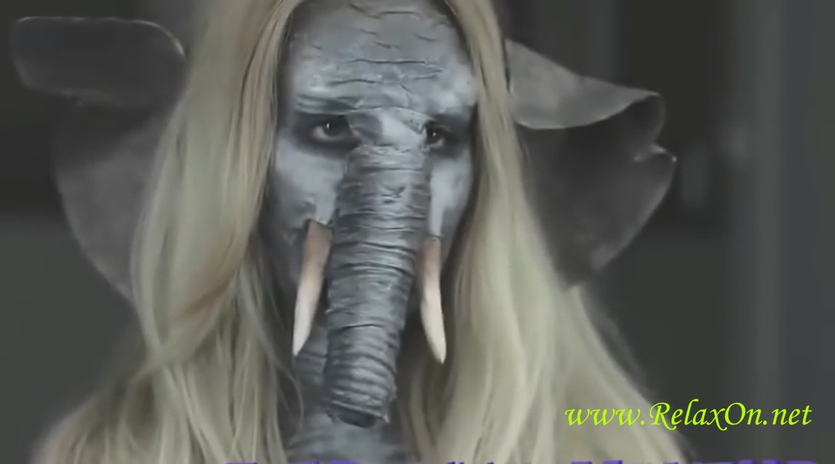 3-слон