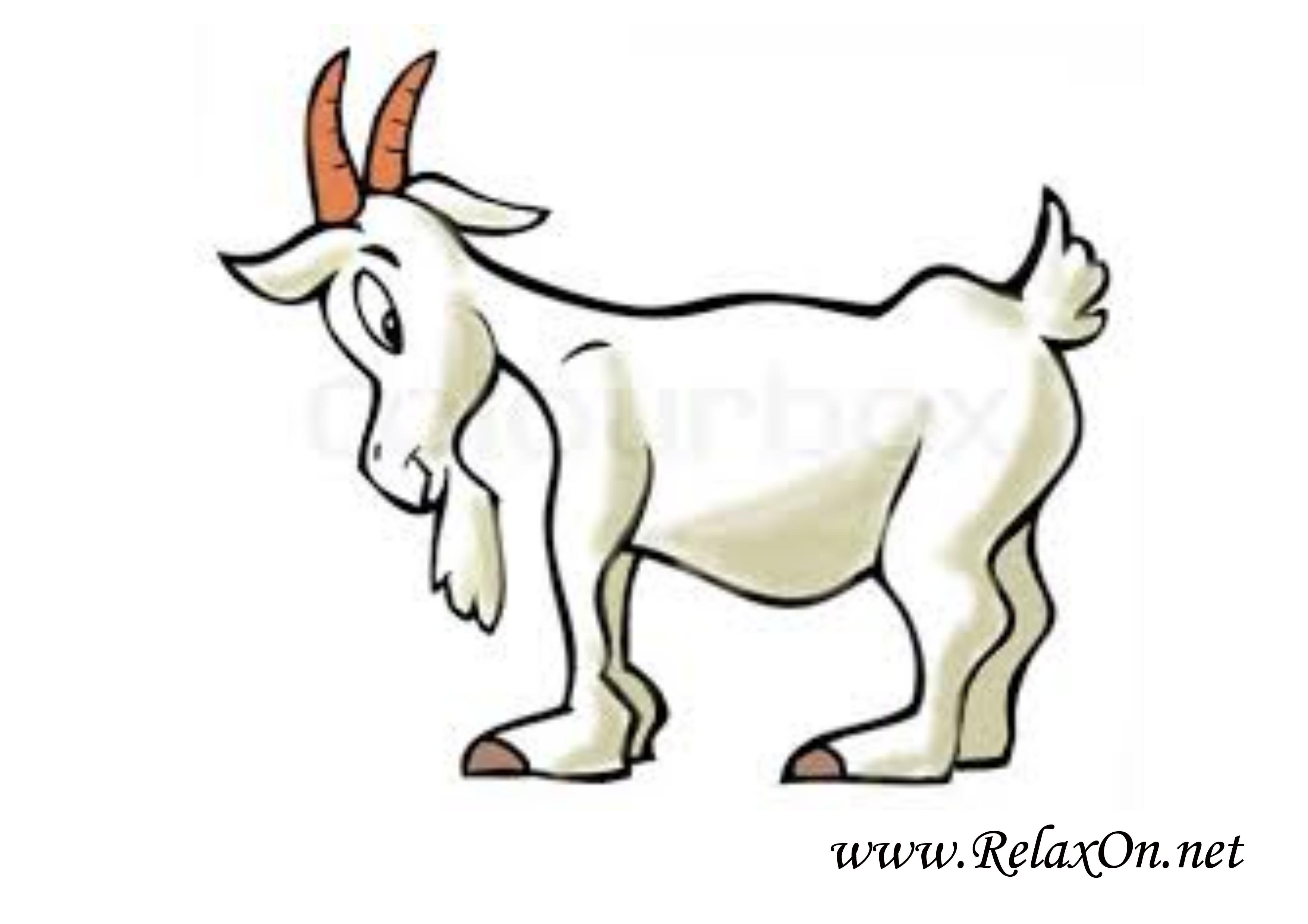 Коза 14