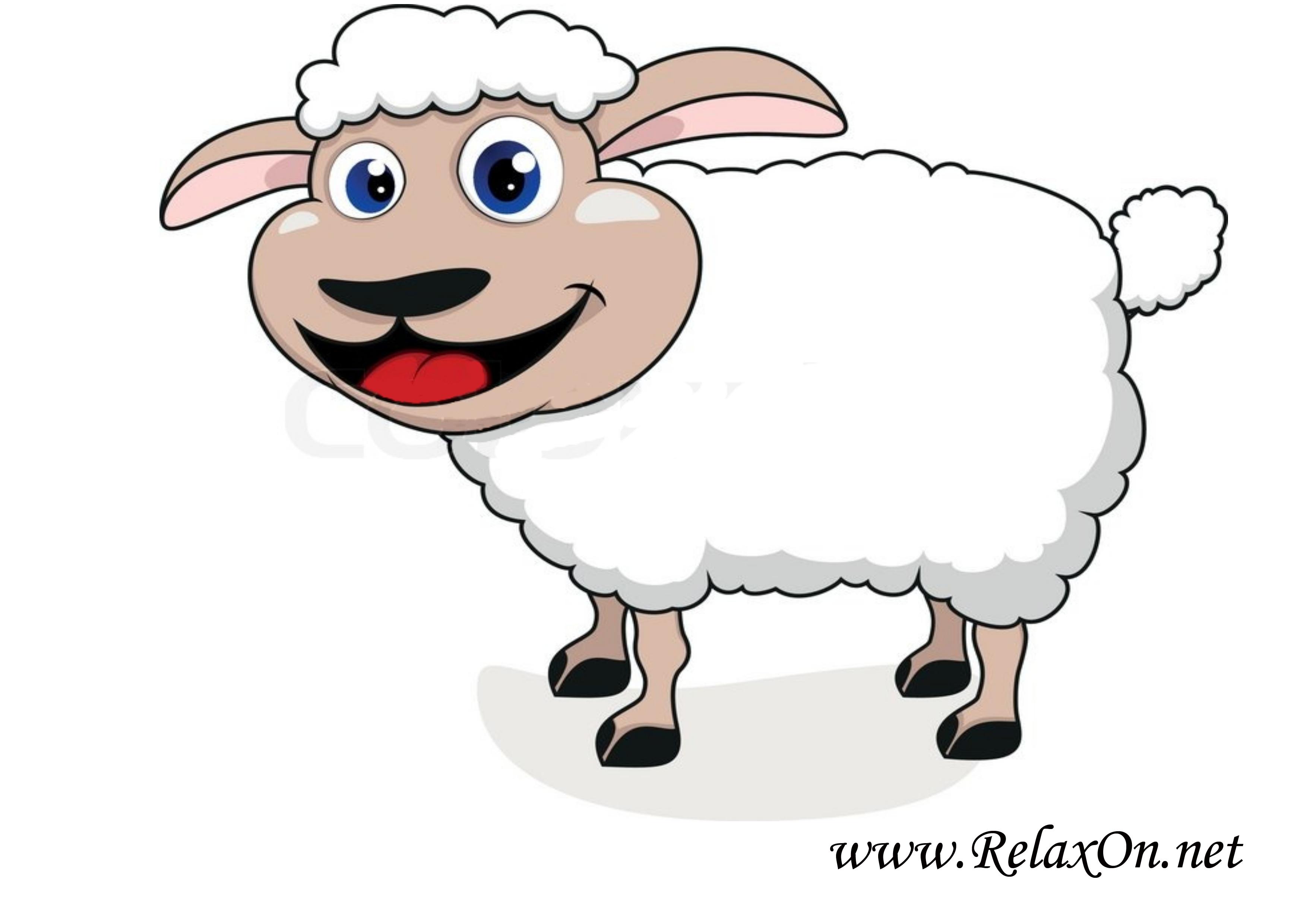 Овца 3
