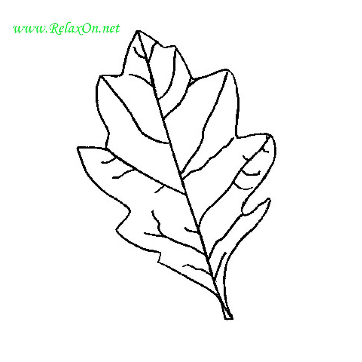 Трафарет дубовых листьев-6