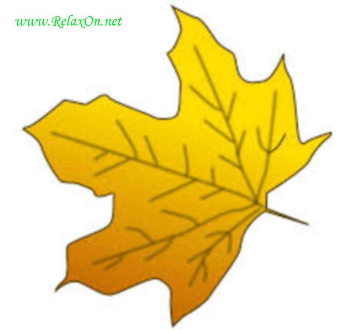 Трафарет кленовых листьев-7