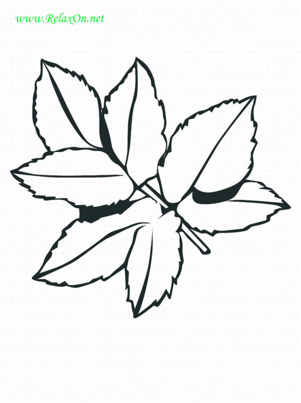 Трафарет листьев-2